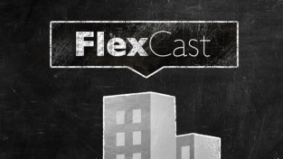 Flex Cast