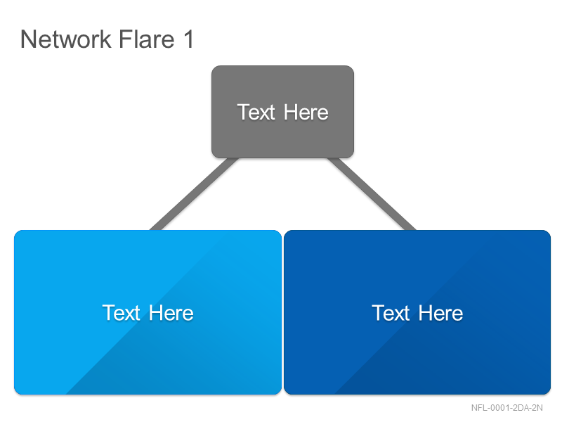 Network Flare 1