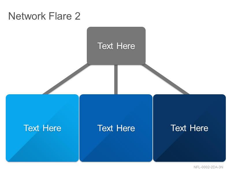 Network Flare 2