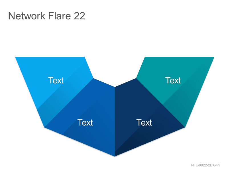 Network Flare 22