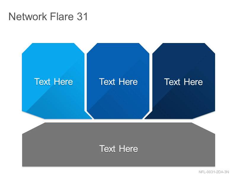Network Flare 31