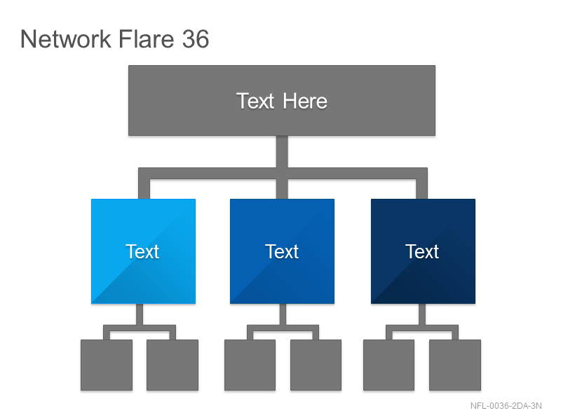 Network Flare 36