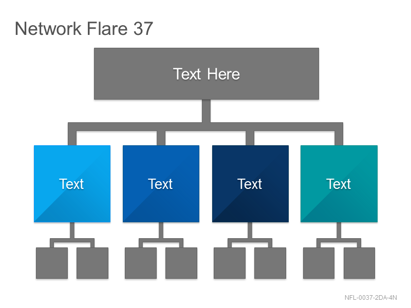 Network Flare 37