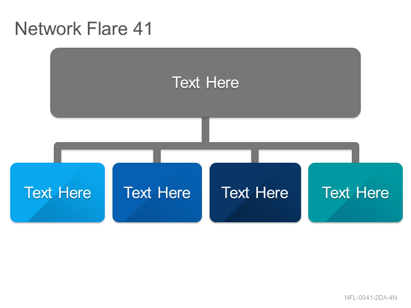Network Flare 41