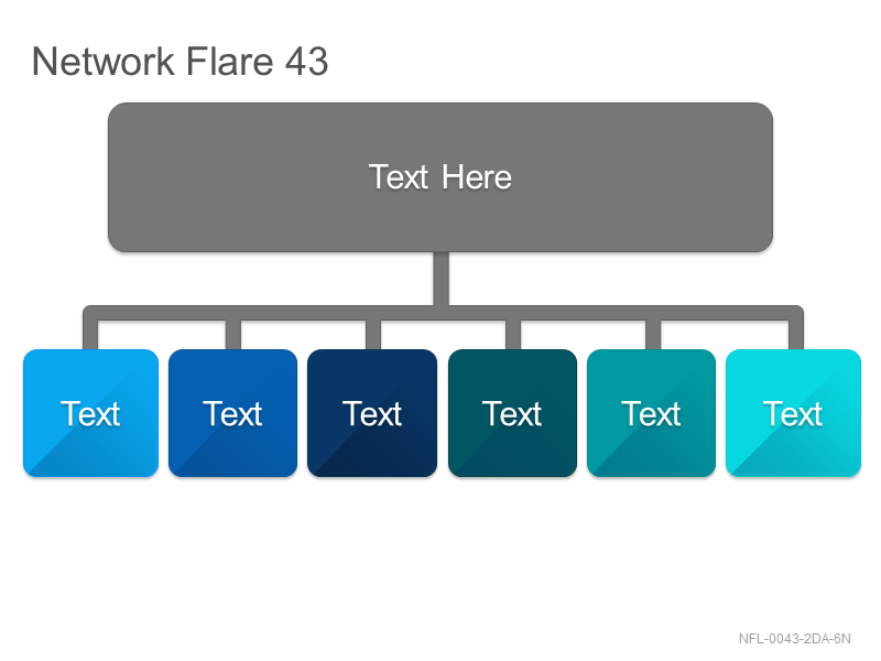 Network Flare 43