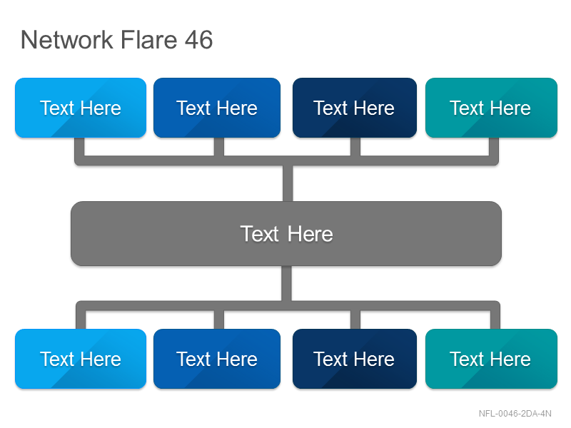 Network Flare 46