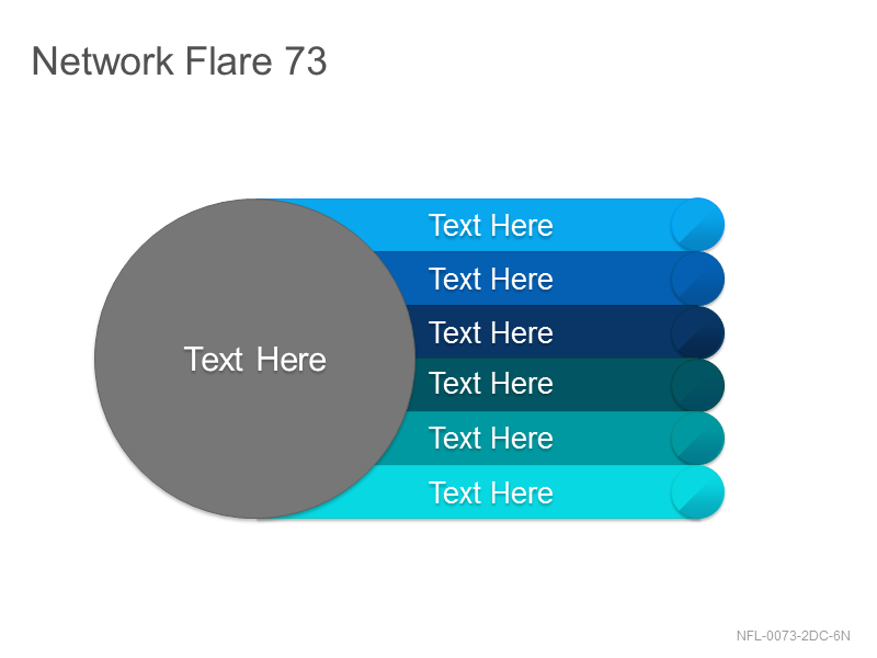 Network Flare 73