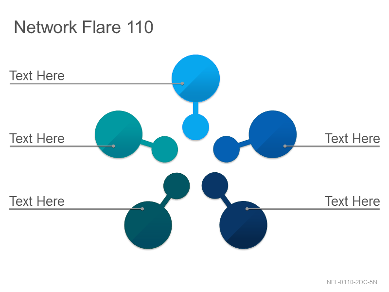 Network Flare 110