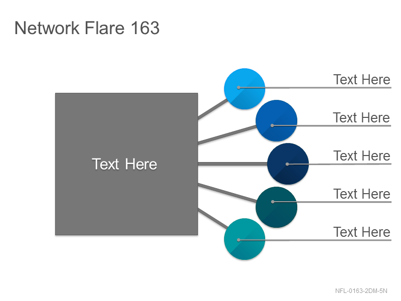 Network Flare 163