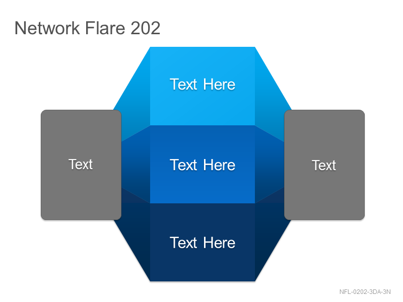 Network Flare 202