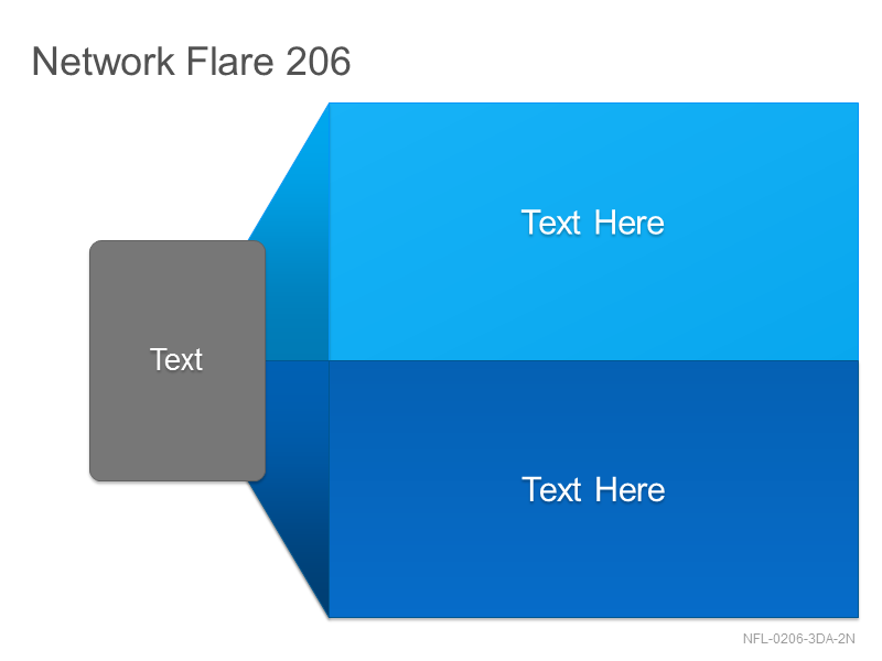 Network Flare 206