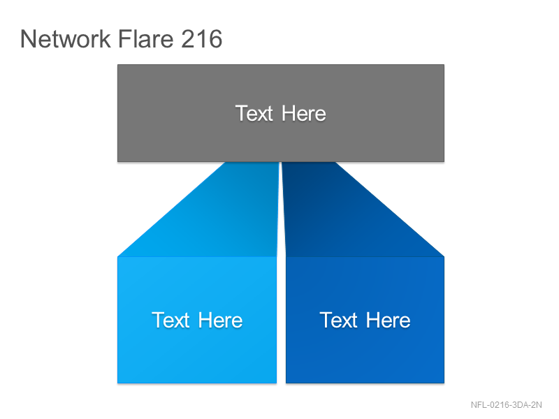 Network Flare 216