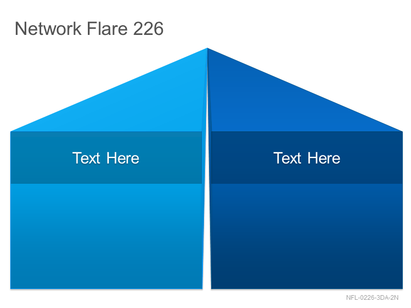 Network Flare 226