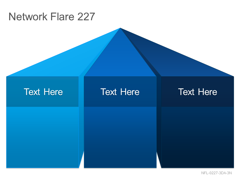 Network Flare 227