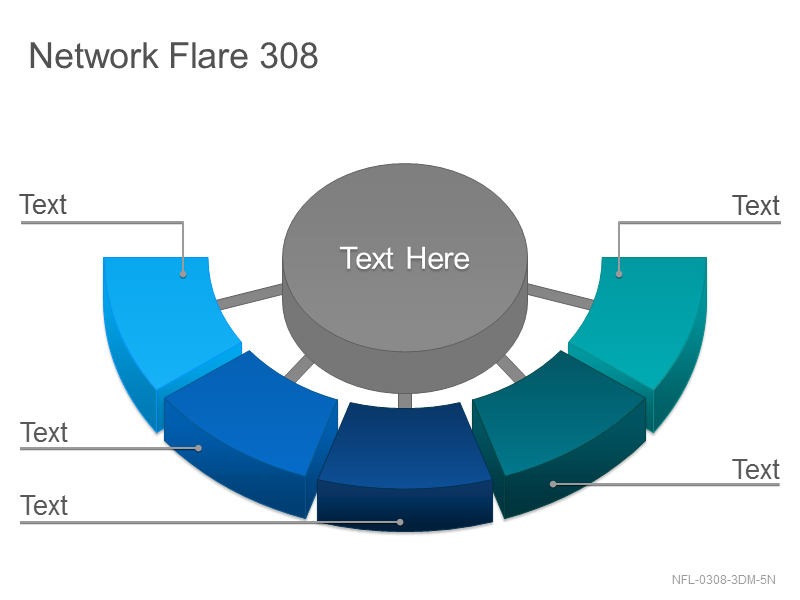 Network Flare 308