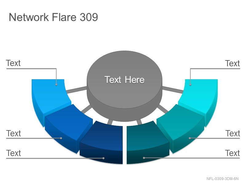 Network Flare 309