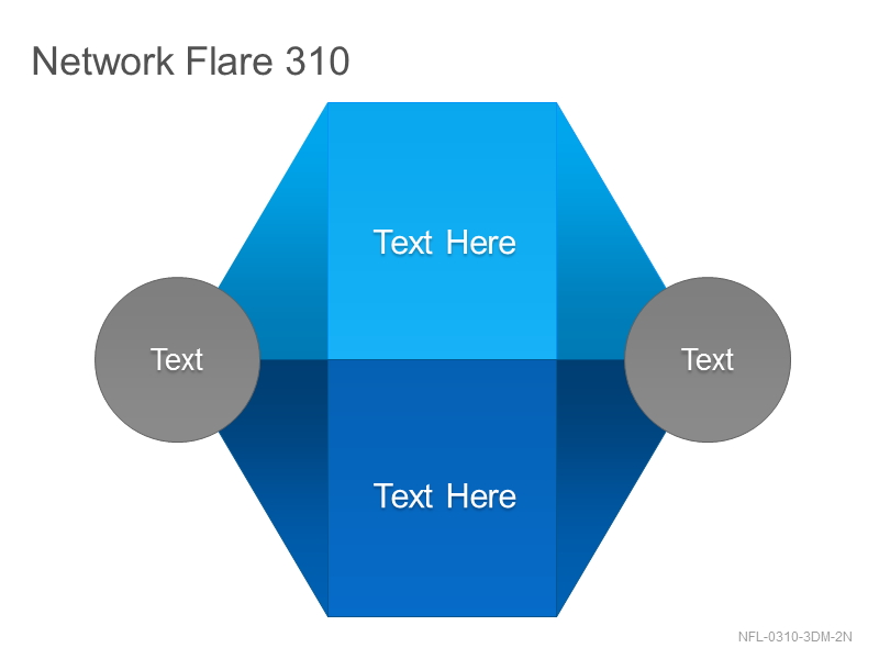 Network Flare 310