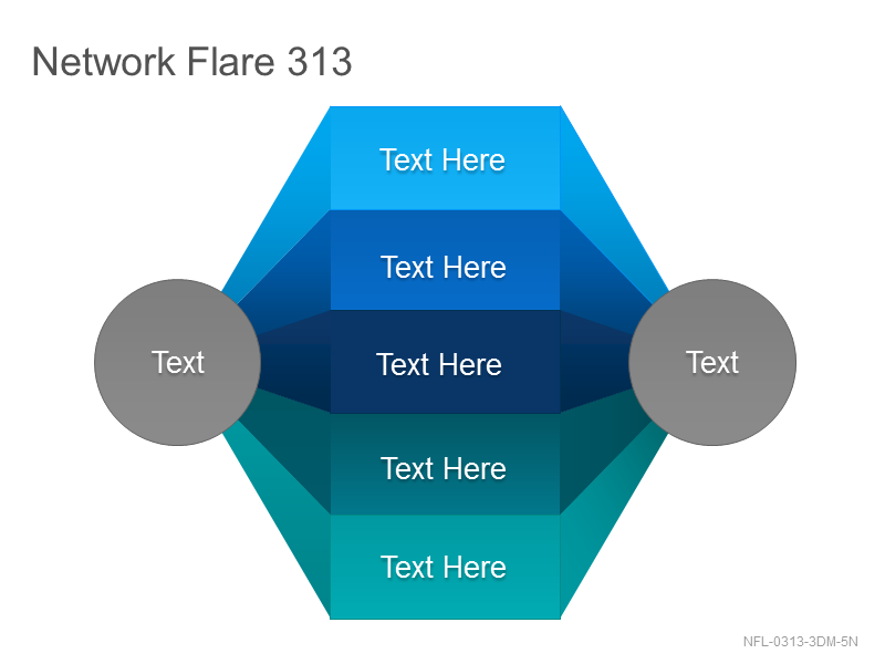Network Flare 313