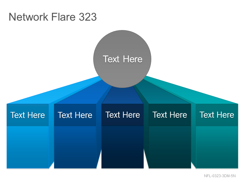 Network Flare 323